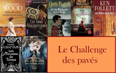 Le challenge des paves copie